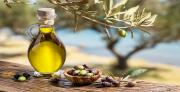 Remediation of olive mill waste water: a combined process of physico-chemical and encapsulated biomass